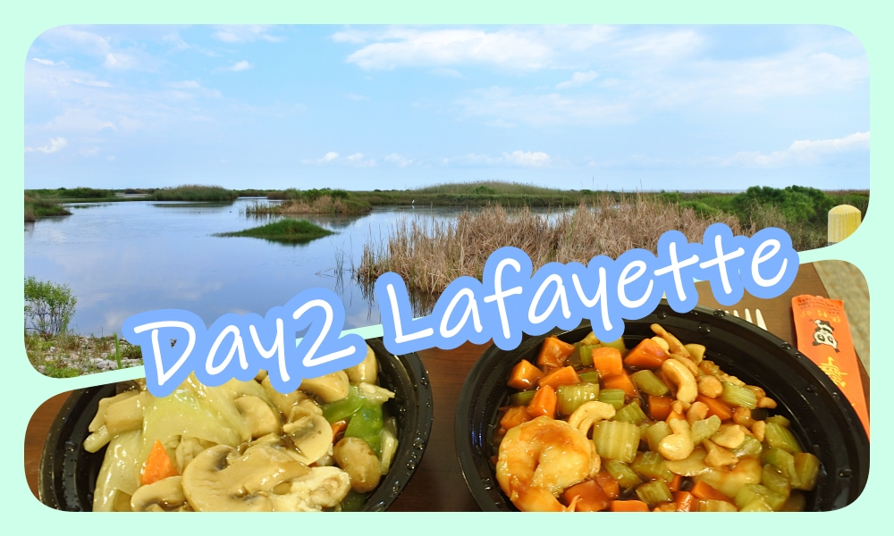 Texas and Louisiana Road Trip during Covid-19 ep.2 : Sea Rim State Park and Lafayette